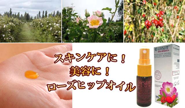 強力な皮膚再生物質(天然トランスレチノイン酸)を含むローズヒップオイル(野ばらの種子から抽出したオイル)